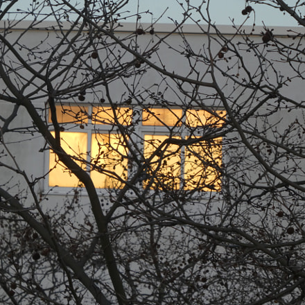 window, Panasonic DMC-TZ81