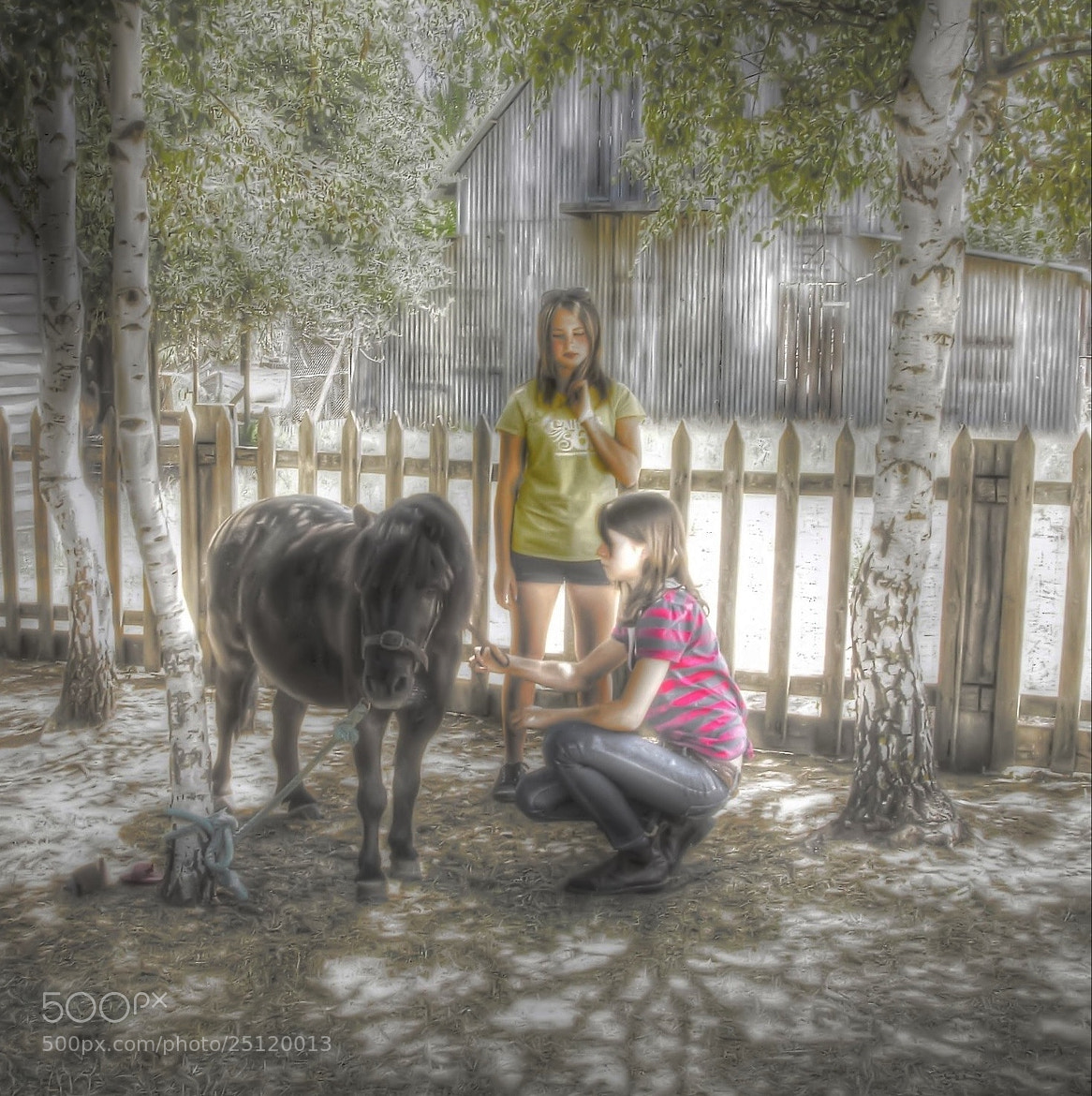 Photograph Two girls and a pony by Doctor Beat on 500px