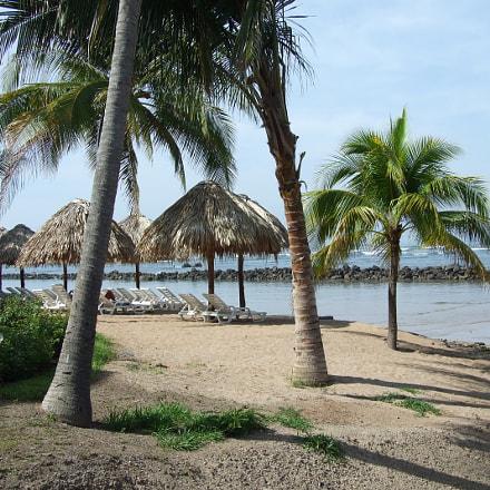 El Salvador Palm Trees, Fujifilm FinePix S6000fd