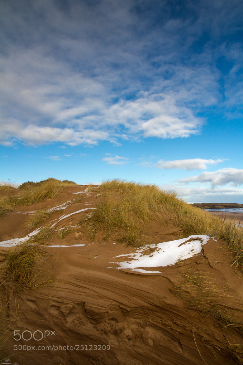 Photograph Sand dunes on Newburgh Beach by Simon Baker on 500px
