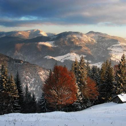Autumn is winter, Canon POWERSHOT G3
