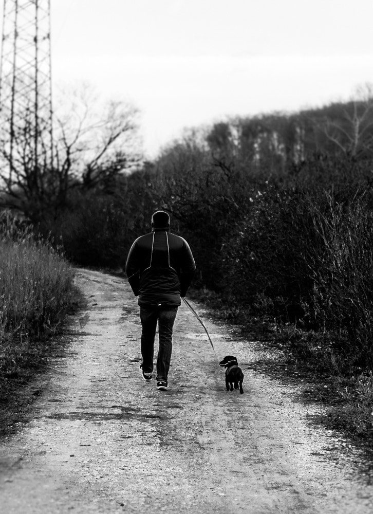 Photograph walk the dog by Marcus T on 500px