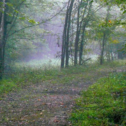Early Morning Walk, Panasonic DMC-FX07