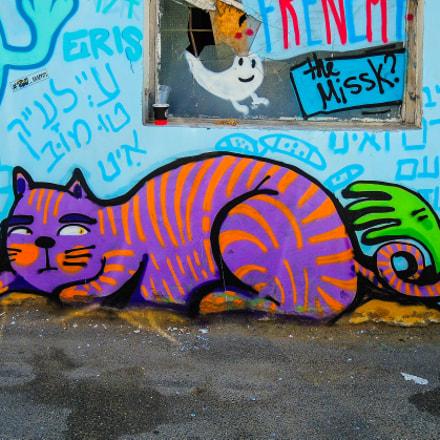 Tel Aviv Street Art, Nikon COOLPIX P7800