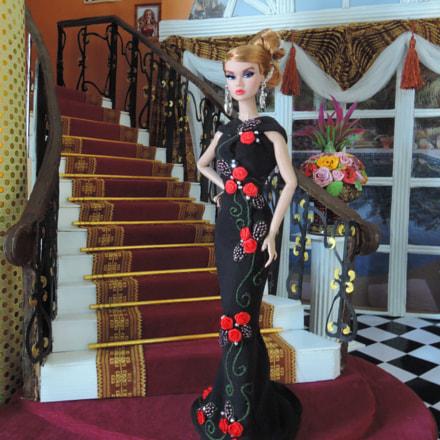 Poppy en robe de, Nikon COOLPIX P330