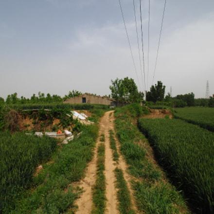 山东省泰安市大汶口镇。通往文姜城遗址的土路。, Nikon D2XS, Tamron SP AF 11-18mm f/4.5-5.6 Di II LD Aspherical (IF) (A13)