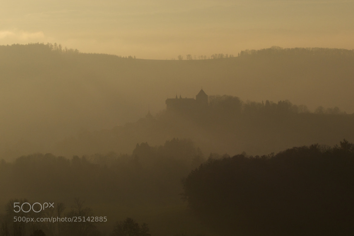 Photograph Golden castle by Ronald Frossard on 500px