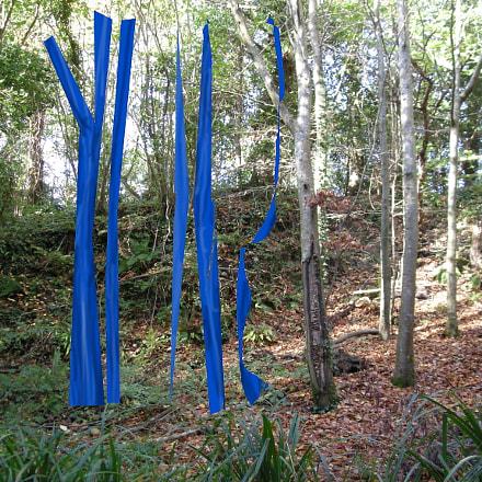 Tree Set, Nikon COOLPIX L12