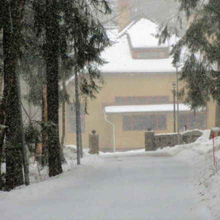 HEAVY SNOWFALL, Sony DSC-HX5V