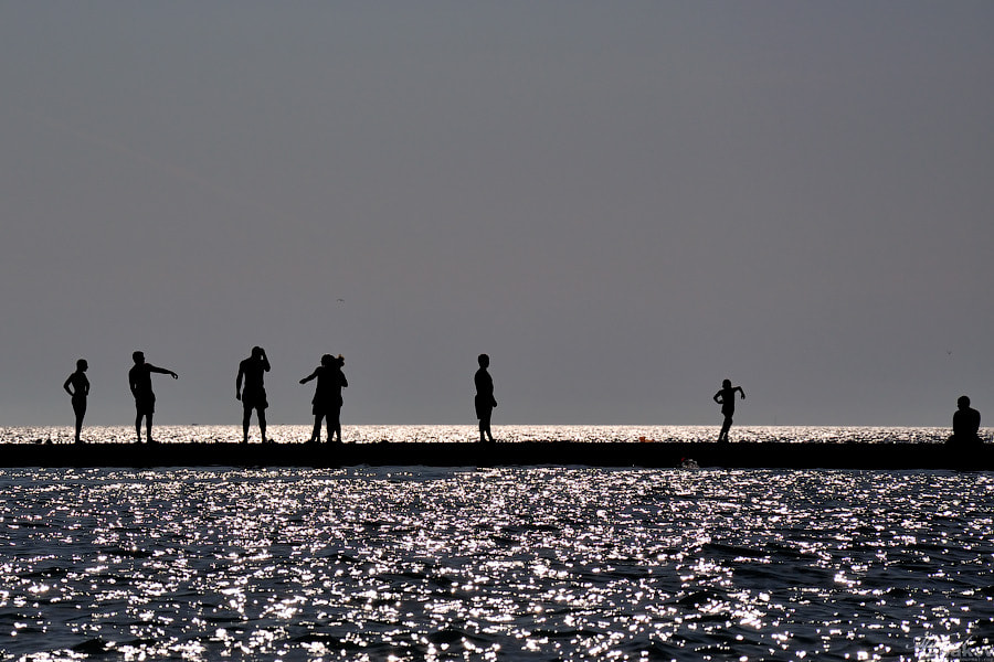Photograph Silhouettes by Michael Babakov on 500px