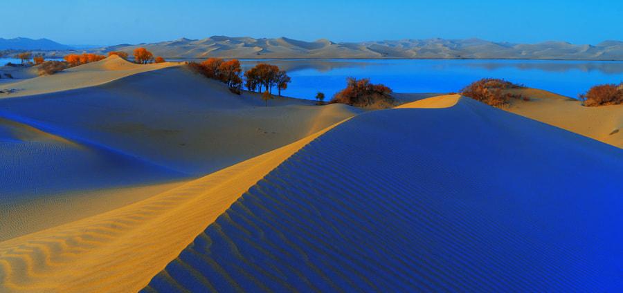 新疆沙漠, автор — 媚药  на 500px.com