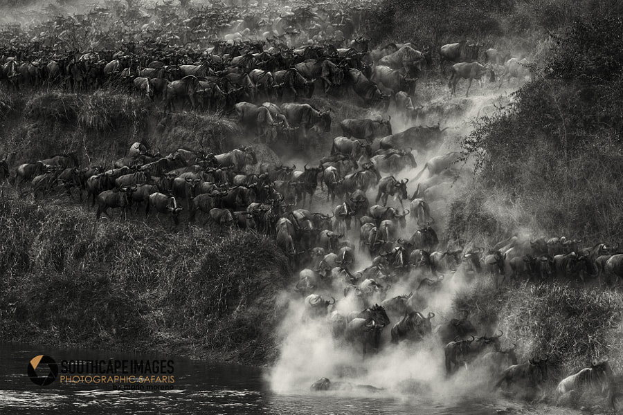 The Crossing by Mario Moreno on 500px.com