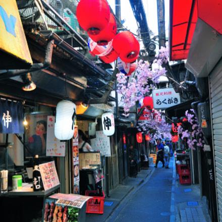 Shinjuku思い出横丁, Nikon D300S, Sigma 10-20mm F4-5.6 EX DC HSM