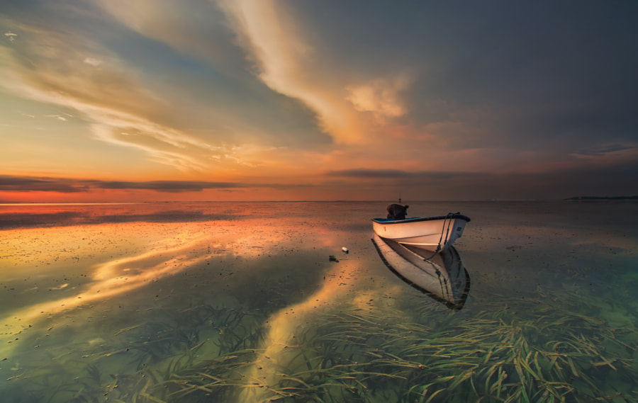 I`m Still Loving You, автор — Bertoni Siswanto на 500px.com