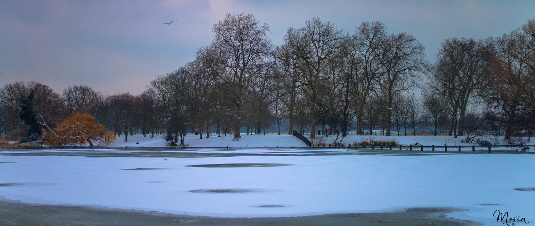 Photograph Regent's Park (London) by Mosin  on 500px