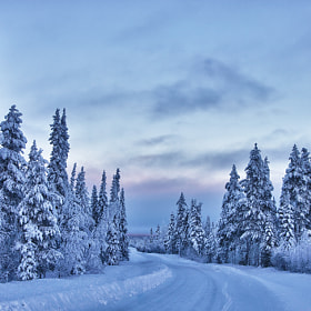 Lappland, Kittilä Region by enonorum ) on 500px.com