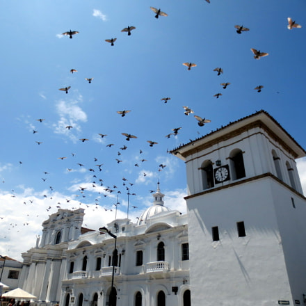 soaring, Canon IXUS 125 HS