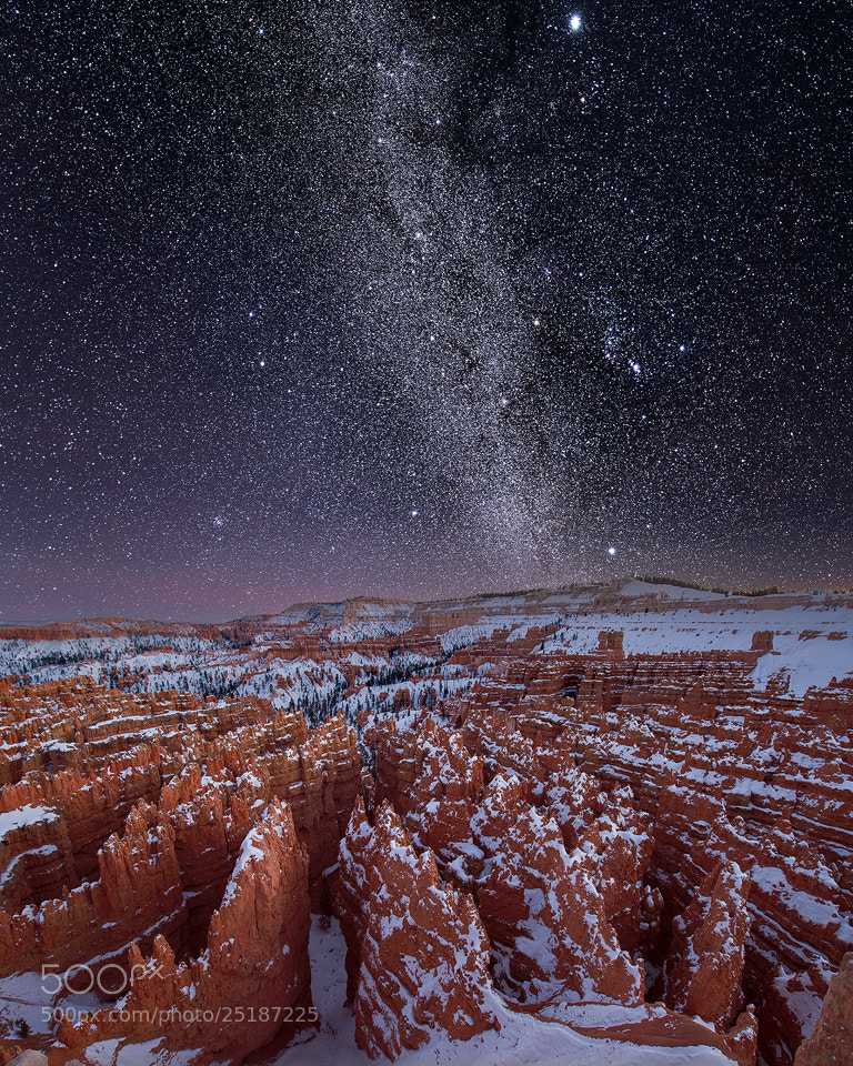 Photograph Silent Stargazers by Steve Perry on 500px
