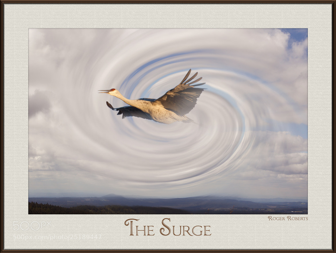 Photograph The Surge by Roger D Roberts on 500px
