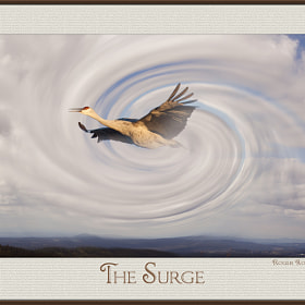 The Surge by Roger Roberts (roger_dale55)) on 500px.com
