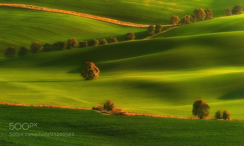 Photograph Among fields... by Pawel Kucharski on 500px