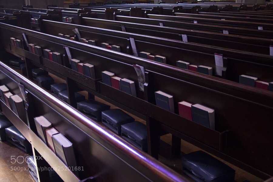 Photograph Bibles by Juanita  Angel  on 500px