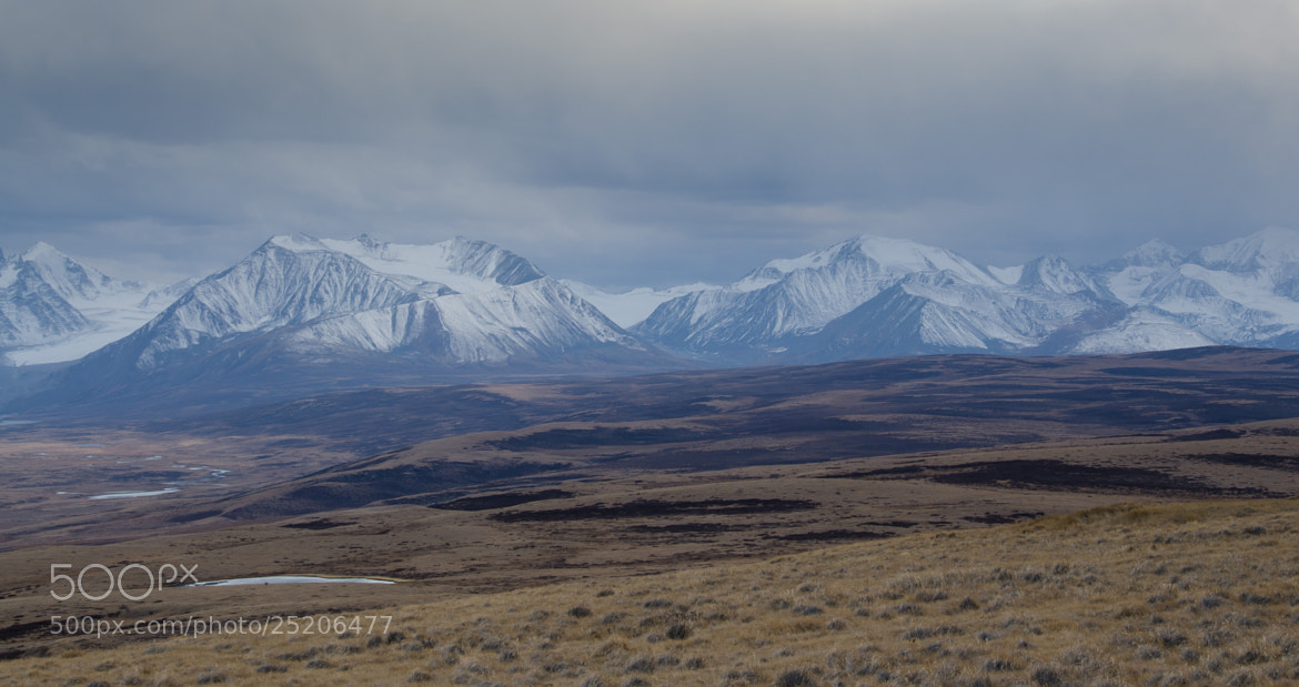 Photograph Ukok plateau #38 by Sergey Kuznetsov on 500px