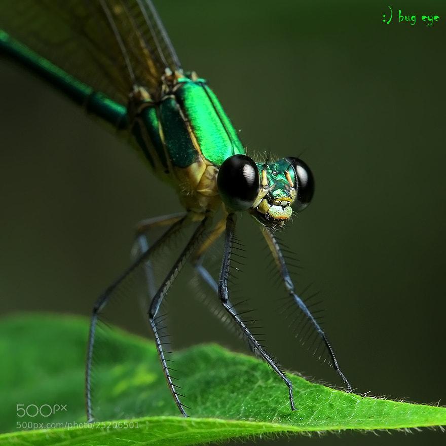 Photograph O-O by bug eye :) on 500px