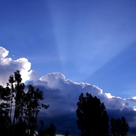 Sunlight during eclipse, Pentax K110D