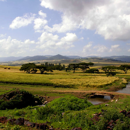 River in savannah, Pentax K110D, smc PENTAX-DA 18-55mm F3.5-5.6 AL
