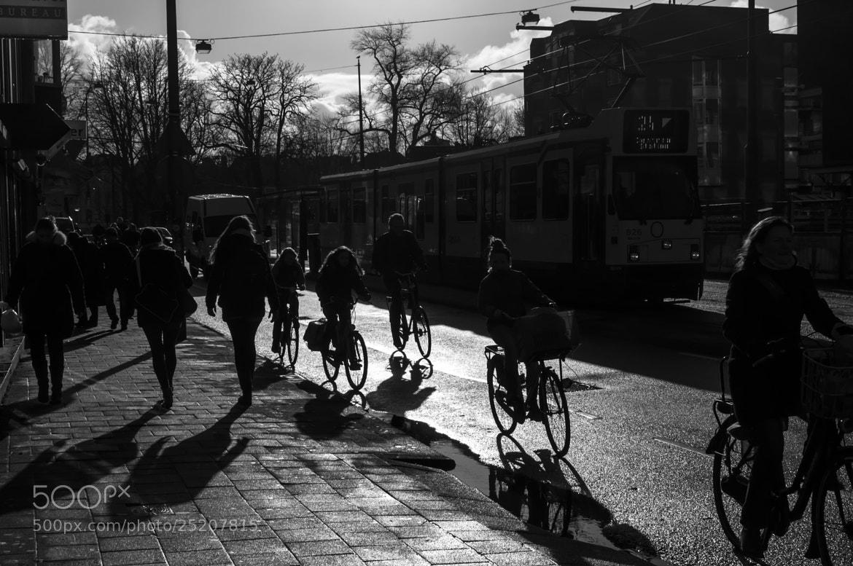 Photograph Silhouettes by Francesco Iannuzzi on 500px