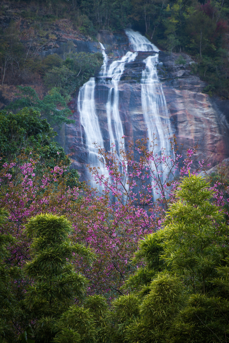 Photograph ฺBeautiful waterfall in Thailand by Natapong P. on 500px