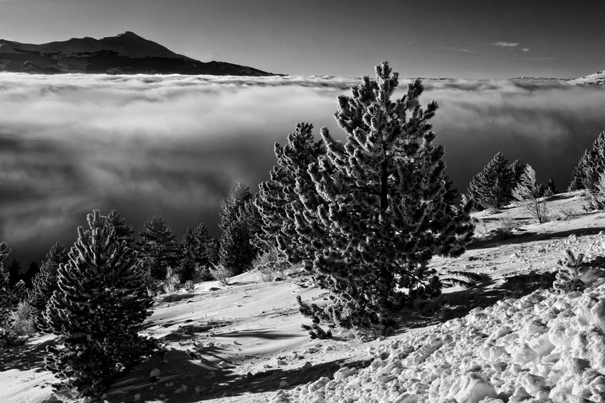 Photograph Mist Rising by mario pignotti on 500px