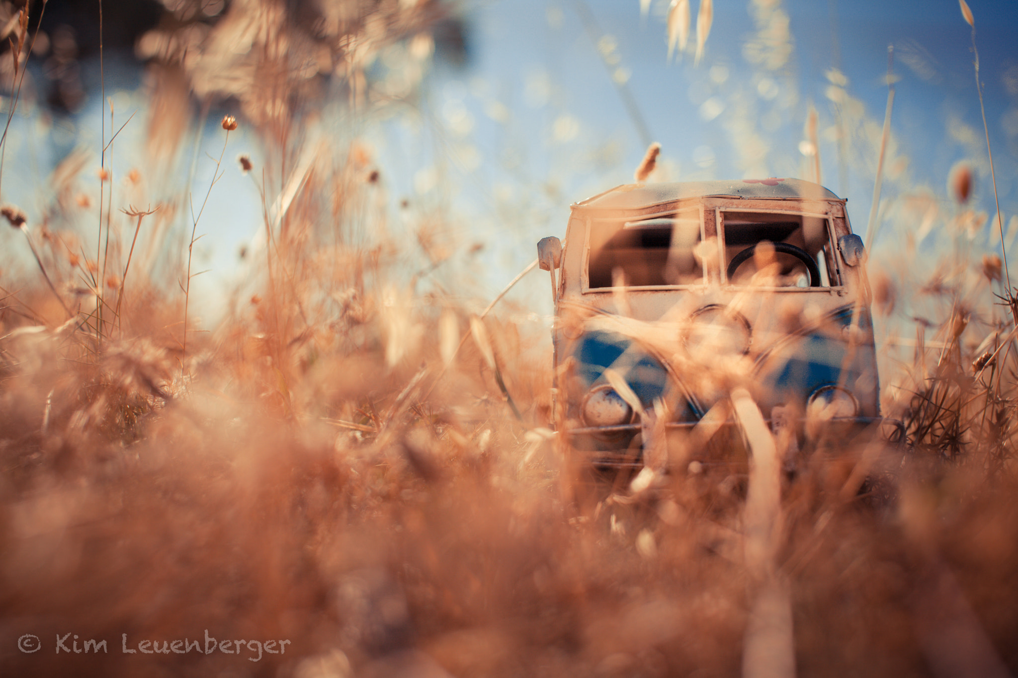 Photograph Camouflage by Kim Leuenberger on 500px