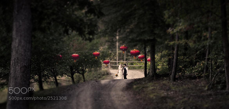Photograph Matrimony  by David Schiffner on 500px