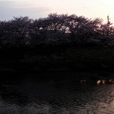 Dusk of spring, Fujifilm XQ1