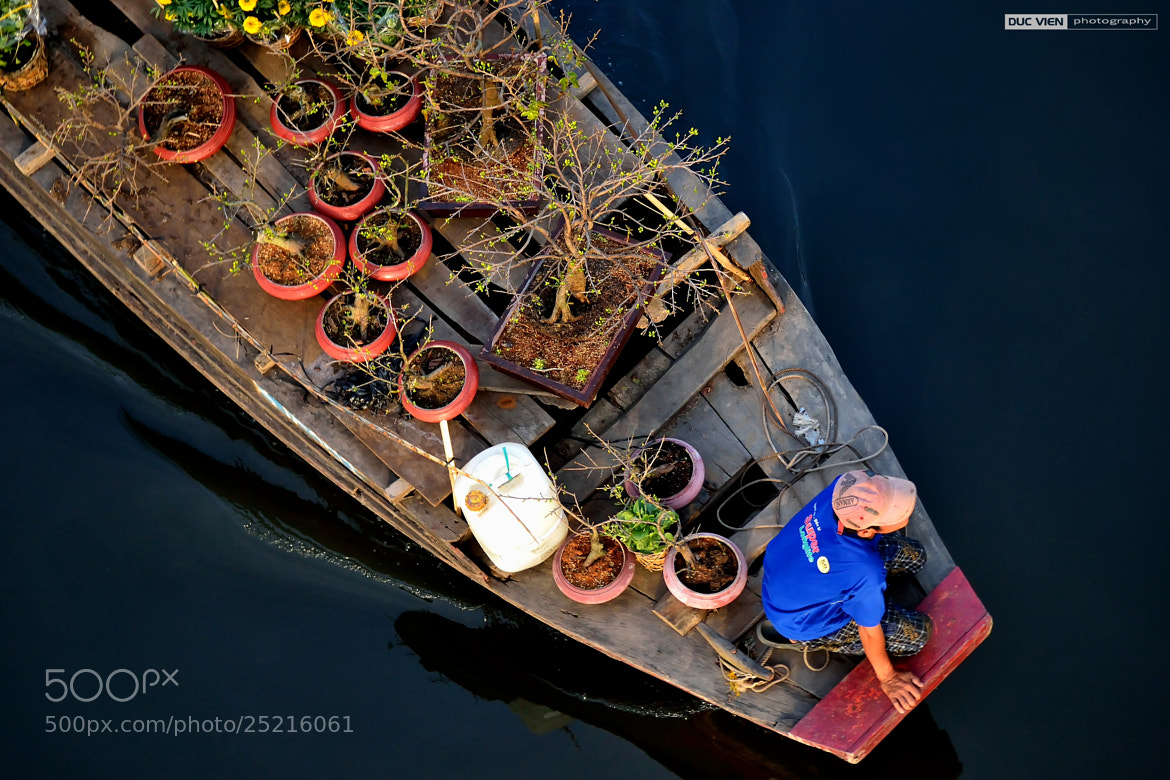 Photograph Flower boat by Duc Vien on 500px