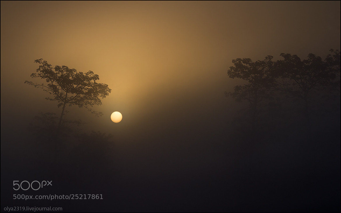 Photograph Sunrise in Nepal by Оля Грачева on 500px