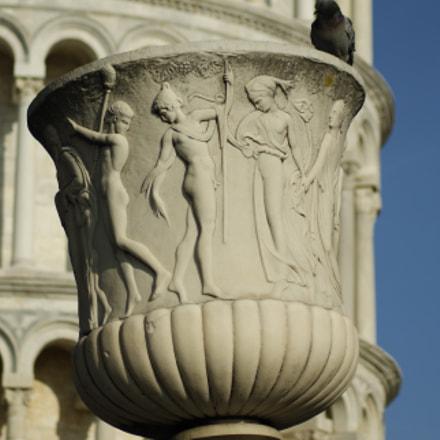 il vaso della torre, Sony DSLR-A290, Tamron AF 70-300mm F4-5.6 Di LD Macro 1:2