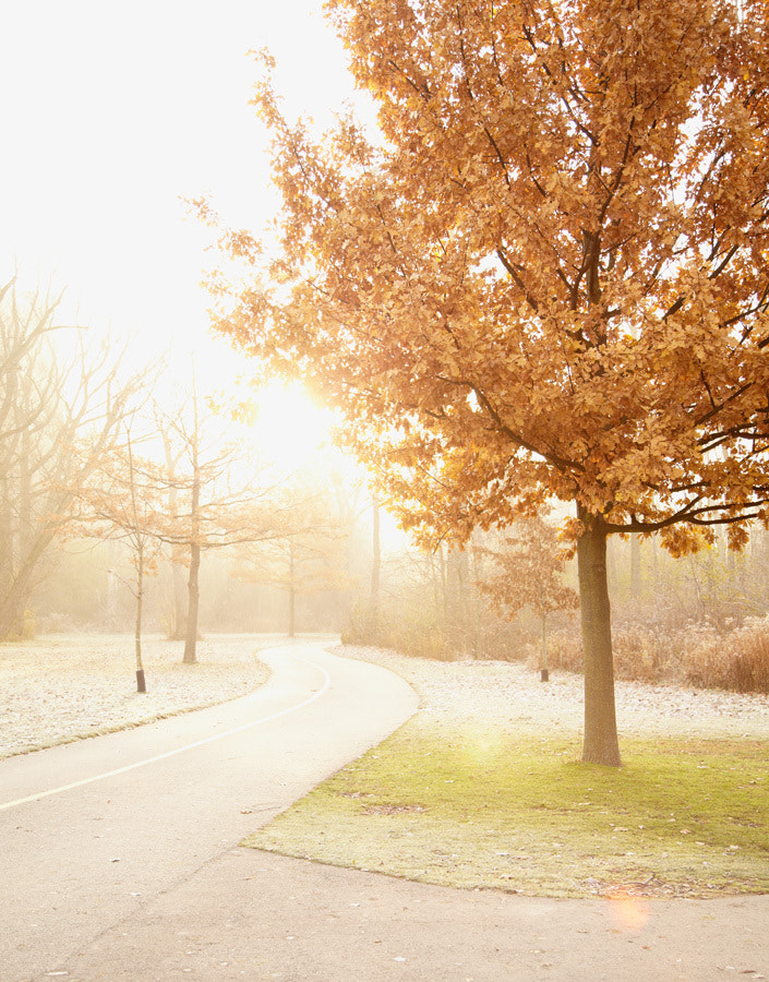 Photograph Morning Run by Jennifer Squires Ross on 500px