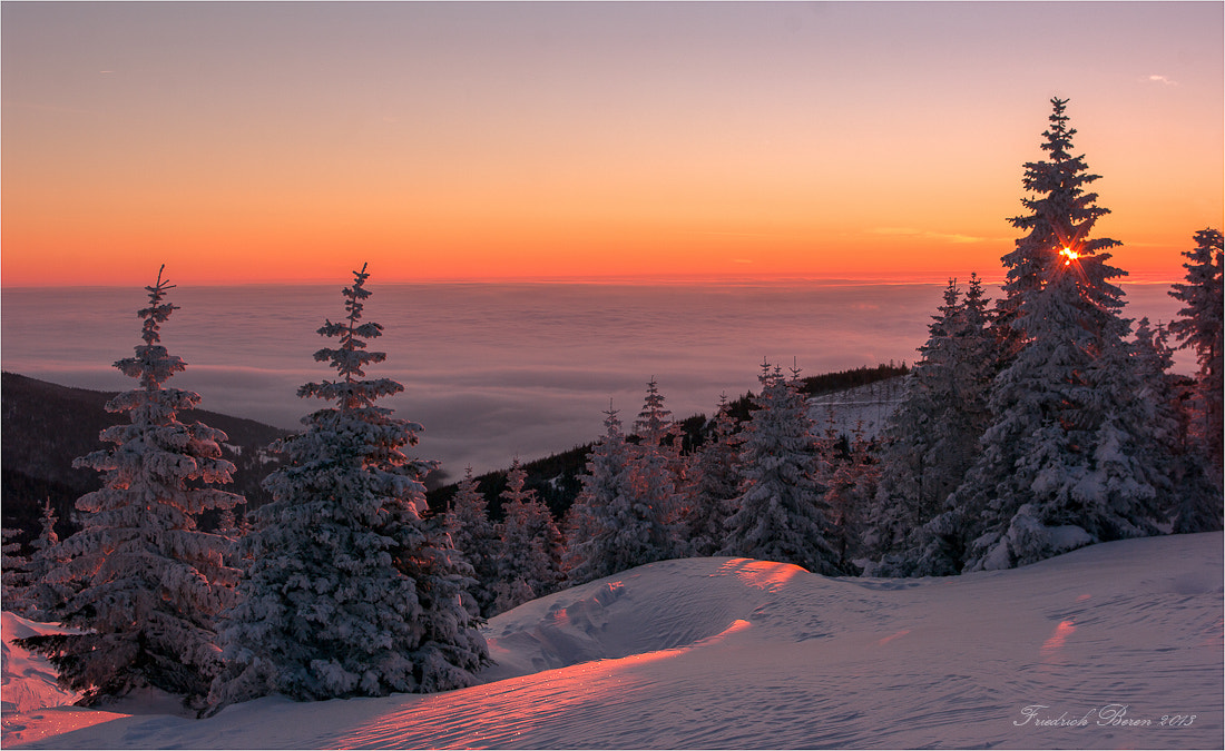 Photograph Untitled by Friedrich Beren on 500px