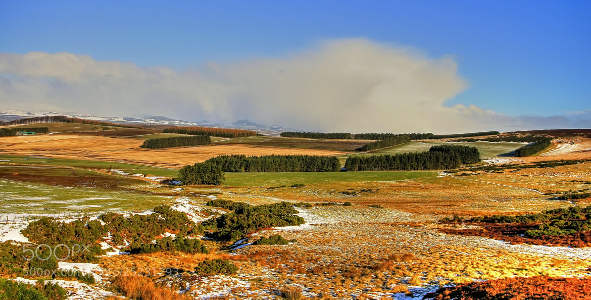 Photograph Looking On The Grampian hills by Hilda Murray on 500px