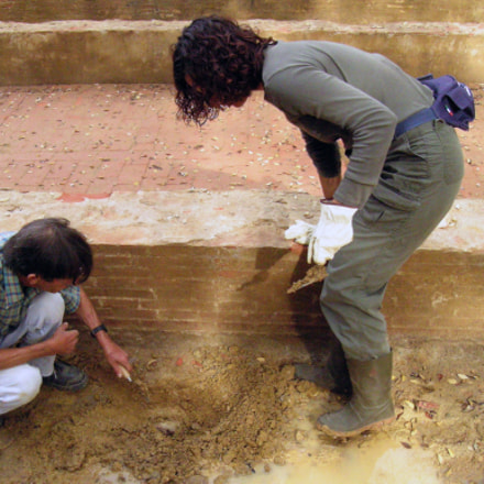 Profili di archeologi, Nikon E5400