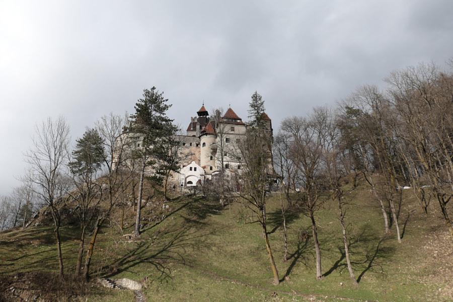 Le château de Bran de Christine Druesne sur 500px.com