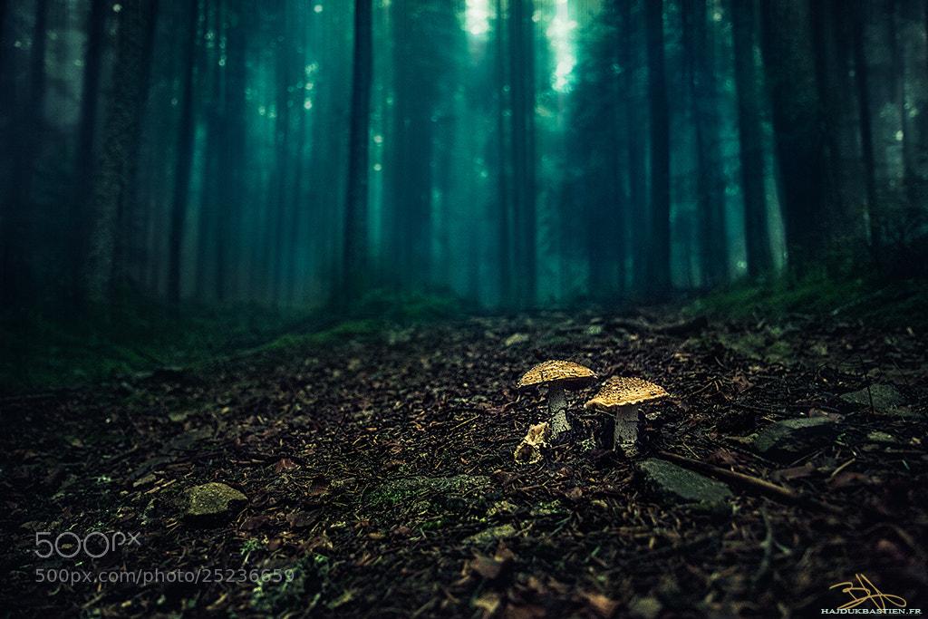 Photograph Darkness by Bastien HAJDUK on 500px