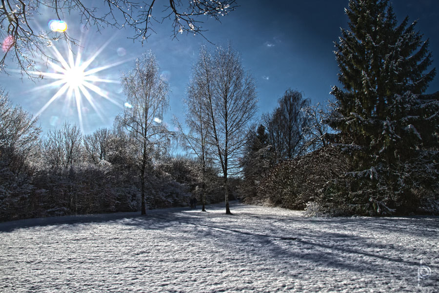Photograph Winter stroll by Benno Pütz on 500px