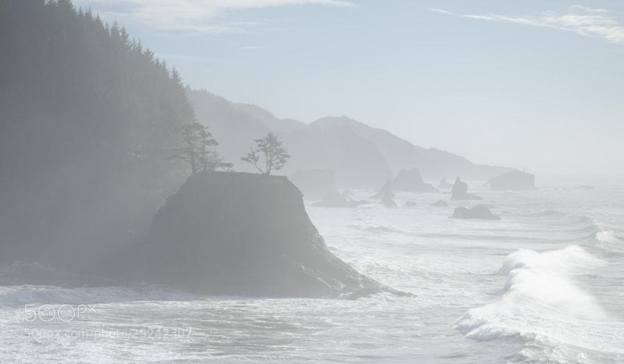 Low contrast, Gold Beach, Oregon coastline, 2013