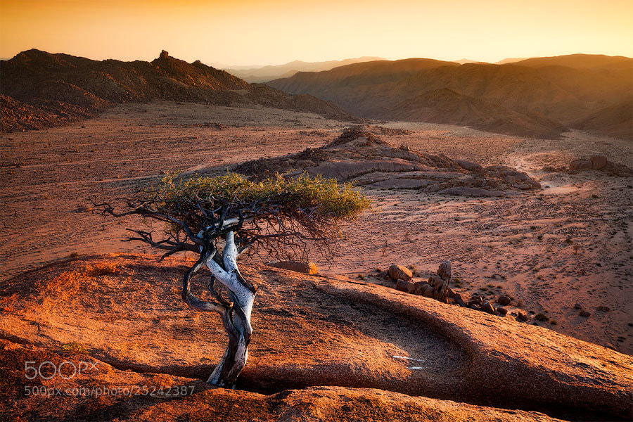 Photograph Barren Terrain by Hougaard Malan on 500px