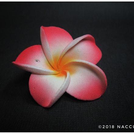 Plastik Flower, Canon IXUS 285 HS