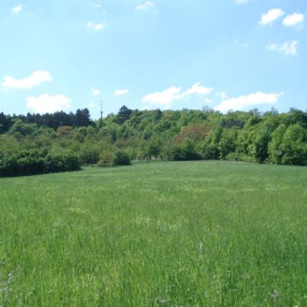 Green Field, Sony DSC-W30